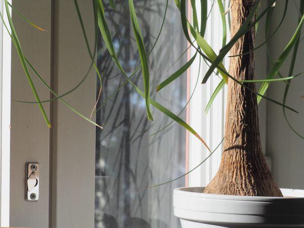 Valot ja varjot kodissani ja sisustamisessa