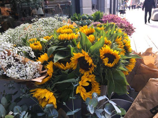 Ihanilla kukkaostoksilla Tukholmassa